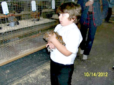 Dylan Dingman, age 8, Gaines, PA with his showmanship bird