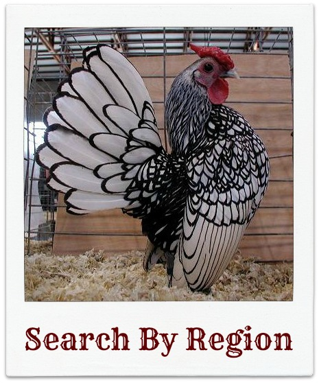 Search for Poultry Shows by State