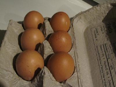Bielefelder eggs